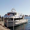 Arriving at Santa Cruz Island