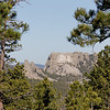 View of Mount Rushmore along the way