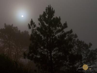 Kiltepan Moonshine