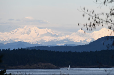 The view from our Bed and Breakfast at Friday Harbor, WA.
