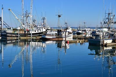Fishing boats in the boat harbor of Westport, Washington
