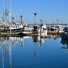 Fishing boats in the boat harbor of Westport, Washington