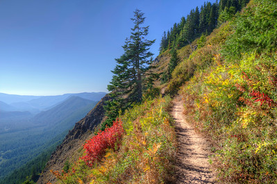 The Narrow Path - Oregon