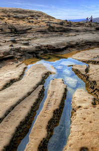Tidal Pools in La Jolla