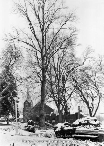 Snowy park 2