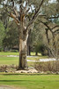 FLorida Golf Trip<br /> <br /> ©2012 JR Howell. All Rights Reserved.<br /> <br /> JR Howell<br /> 1812 37th Street Ct<br /> Moline, IL 61265<br /> JRHowell@me.com