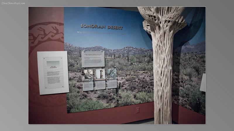 2012_05_14-3 (Heard Museum)-005