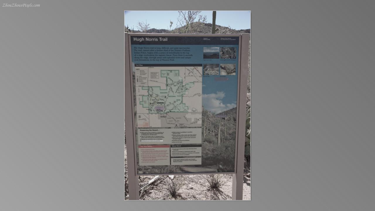 2012_05_14-2 (Saguaro & Desert Museum)-21
