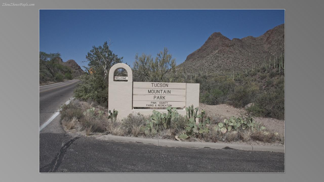 2012_05_14-2 (Saguaro & Desert Museum)-07
