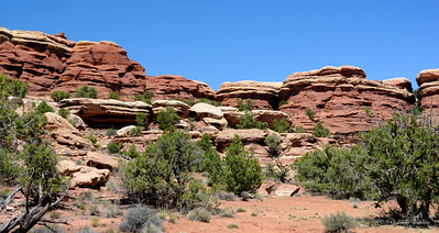 The Needles Area of Canyonlands National Park