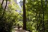 _kd27170 2012-06-16 Asheville