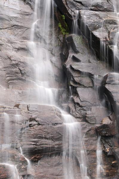 _kd34013 2012-06-16 Asheville