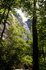 _kd34003 2012-06-16 Asheville