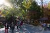 dsc02403 2012-10-13 Hiawassee Georgia