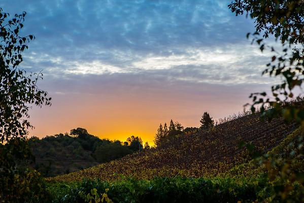 2012 Wine Country, CA