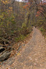 dsc02590 2012-11-11 Amicalola Falls Dawsonville GA