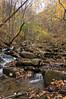 dsc02589 2012-11-11 Amicalola Falls Dawsonville GA