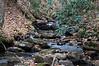 dsc02584 2012-11-11 Amicalola Falls Dawsonville GA