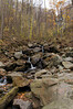 dsc02592 2012-11-11 Amicalola Falls Dawsonville GA