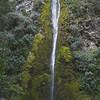 Dog Stream Waterfall