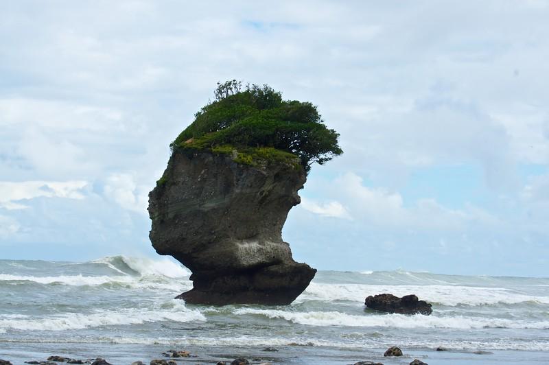 Motukiekie Beach Head