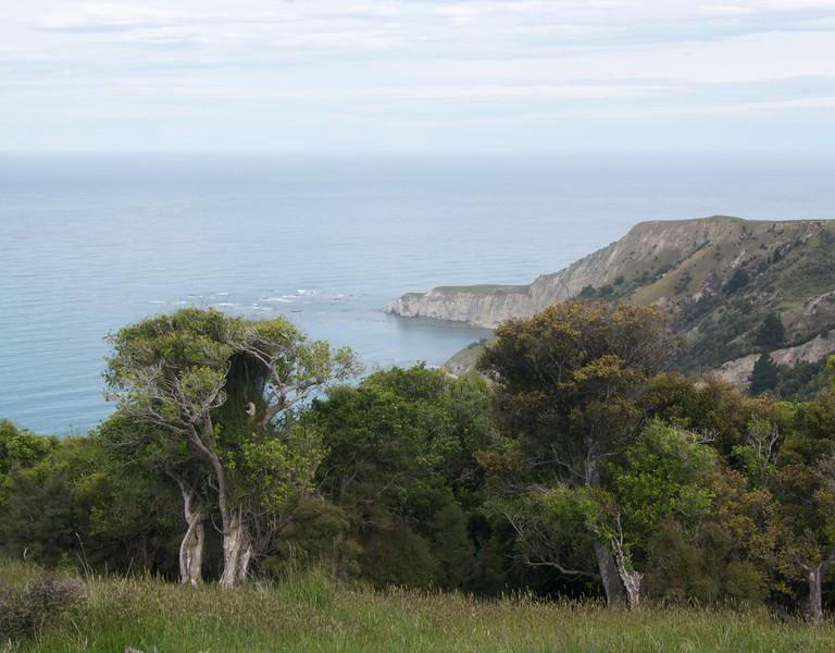 Haumuri Bluffs