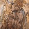 Ngarua Cave