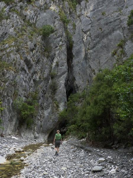 Approaching the sawcut