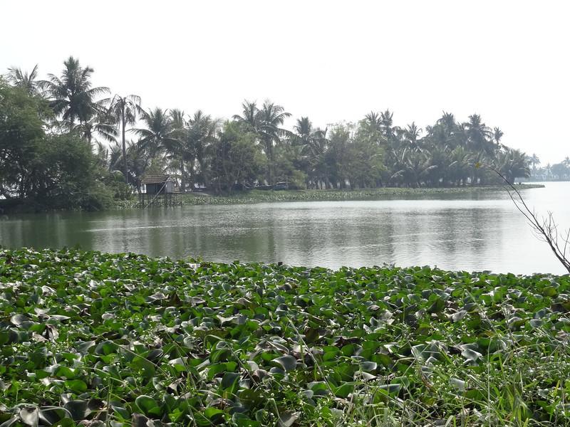 Water park adjacent to Nicco Park