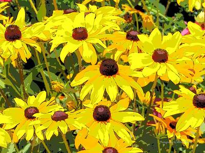 Ozark Botanical Gardens