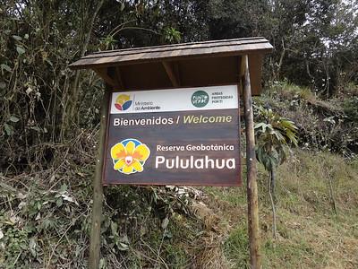 Pululahua Geobotanical Reserve: http://wikitravel.org/en/Pululahua_Geobotanical_Reserve