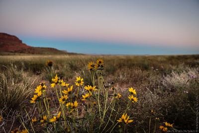 Vermilion Cliffs Sunset