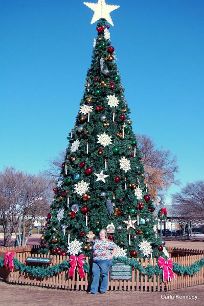 In Front of tree in the Veterans park in Fredericksburg