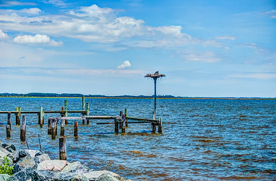 2014/06/22-27 Crisfield MD with Road Scholar