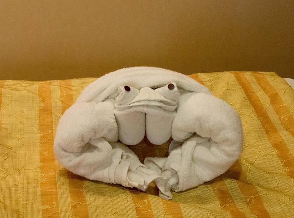 я так понимаю что это лягушка.  This is our resident frog.