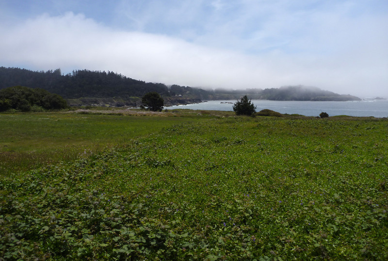 Mendocino waterfront