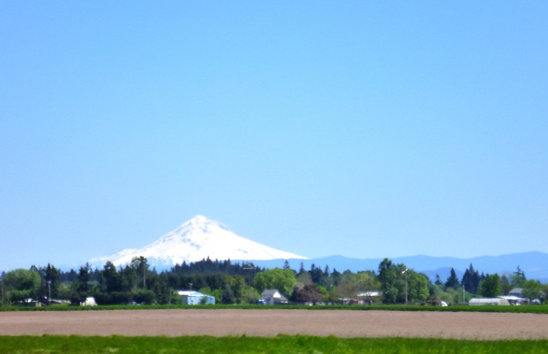 Mt Hood from about 100km away, near Silverton OR.