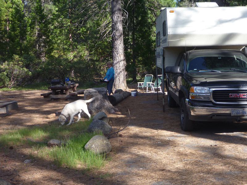 Shasta campsite, nice now, but 5~9 inches of snow predicted in a few hours