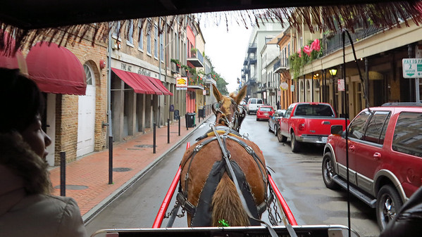 French Quarter carriange ride