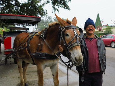 Carlo the guide and Doc the Mule