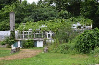 Overgrown Greenhouse - Hillside Farms PA