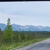 Thu, June 20, 2013 - Tok, Alaska.
