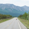 Thu, June 20, 2013 - Tok, Alaska. Caribou in the street.