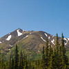 Sunday, June 23, 2013 - Denali National Park.