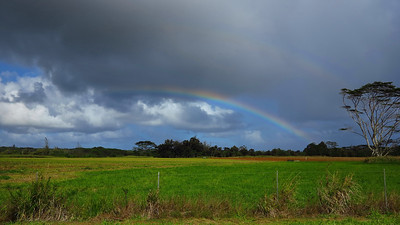 saw our first rainbow near the Menehune Fish Pond