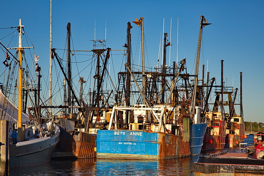4510 Part of the fishing fleet in New Bedford. From the looks of the boats I think they are shrimpers, but I can't tell a shrimper from a scalloper. They both have long booms that extend to the side when they are working.