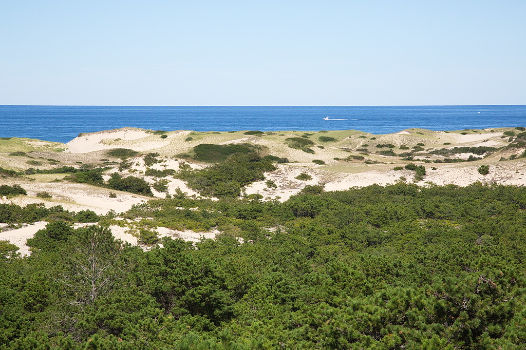 30 Dunes at the Cape Cod National Seashore.