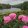 Bridge of Flowers, Shelburne Falls, Massachusetts