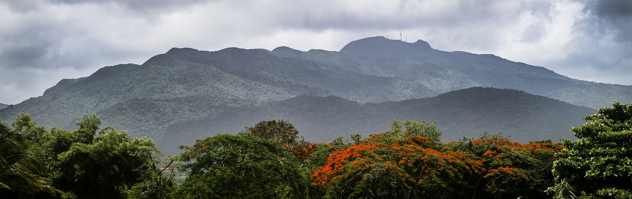 Foggy Mountainside after the rain...<br /> <br /> Puerto Rico