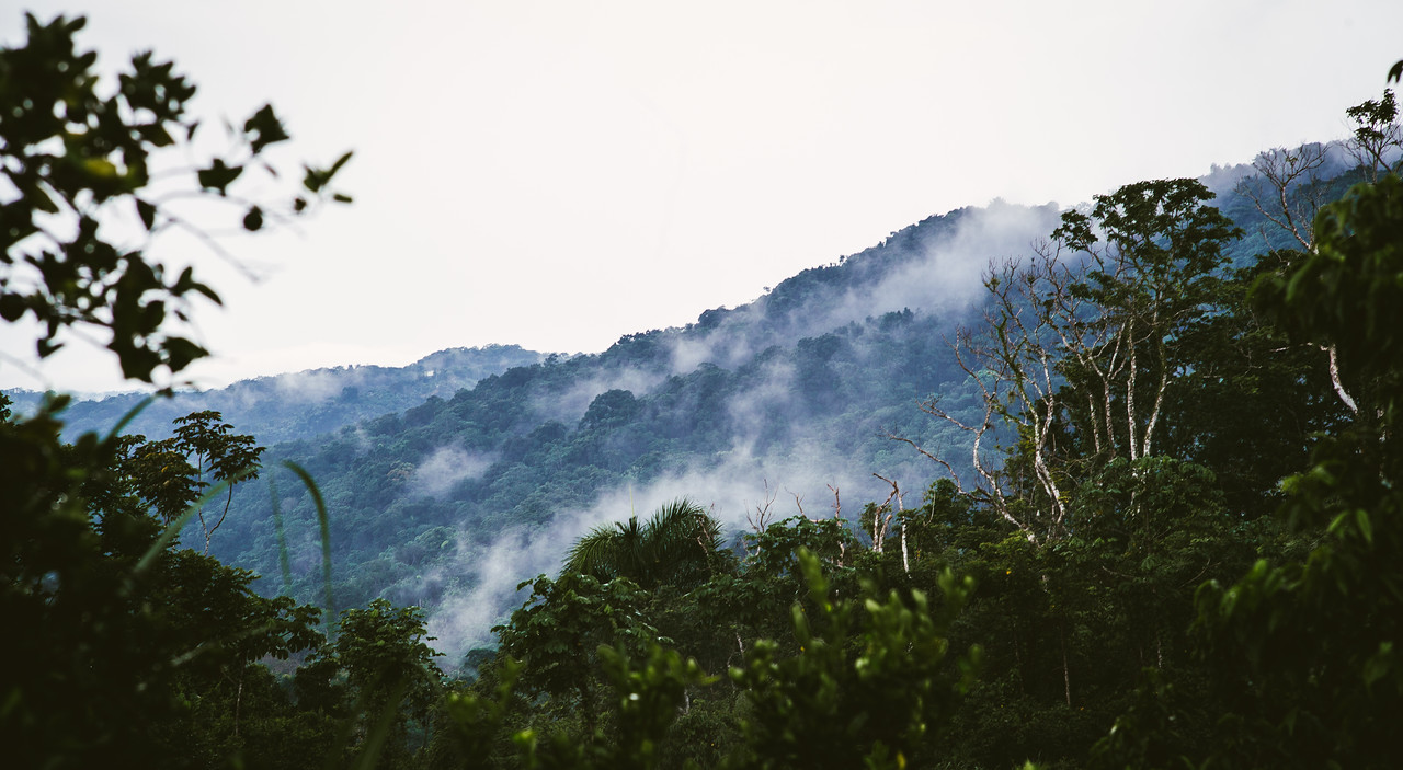 Misty Mountains...<br /> Puerto Rico